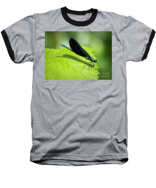 Baseball T-Shirt featuring the photograph Ebony Jewelwing by Ricky L Jones