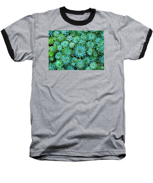 Echeveria 2 Baseball T-Shirt