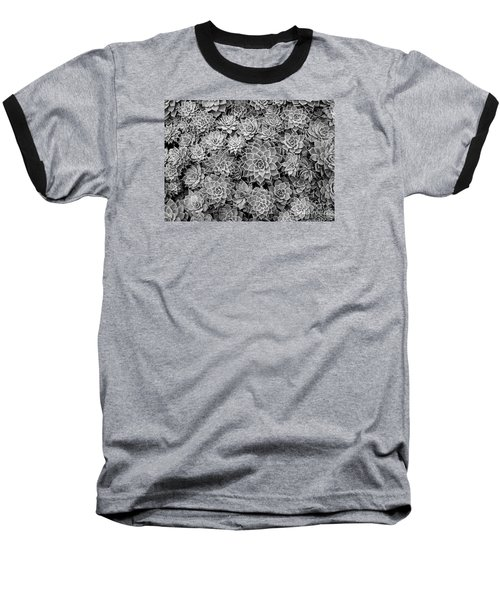 Echeveria Monochrome Baseball T-Shirt
