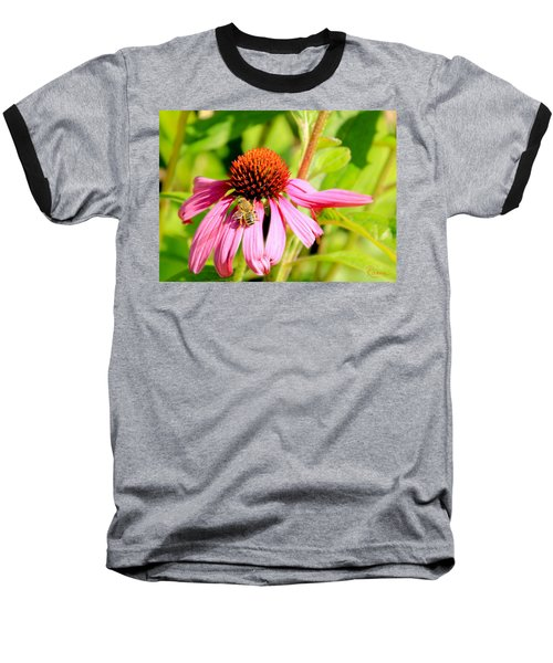 Echinacea Bee Baseball T-Shirt