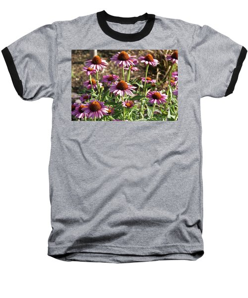 Echinacea Baseball T-Shirt by Cynthia Powell