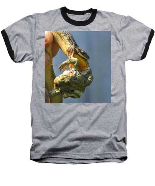 Ecosystem Baseball T-Shirt by Lisa DiFruscio