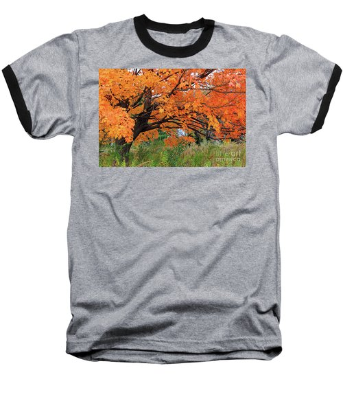 Edna's Tree Baseball T-Shirt