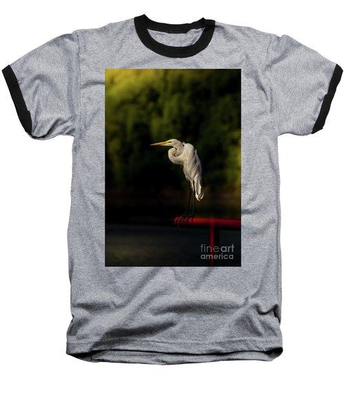 Egret On Deck Rail Baseball T-Shirt by Robert Frederick