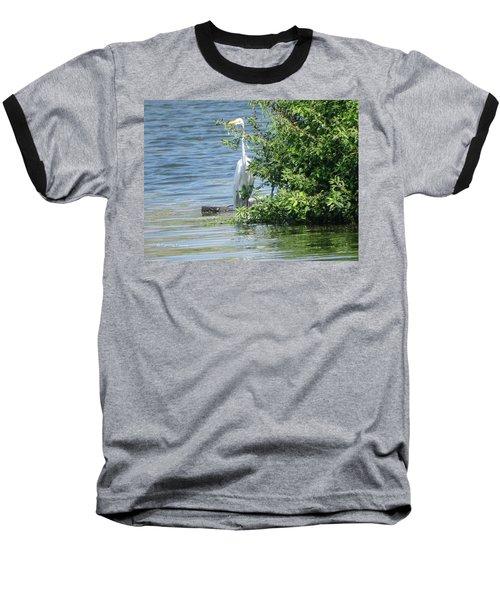 Great Egret In The Marsh Baseball T-Shirt