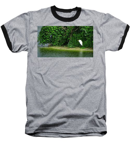 Egret Wakodahatchee Florida Wetlands Baseball T-Shirt