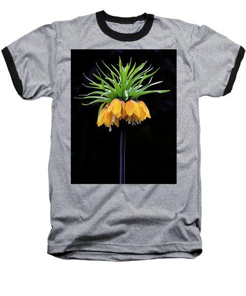 Baseball T-Shirt featuring the photograph Elegance by Elvira Butler