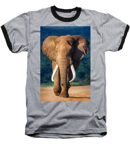 Elephant Approaching Baseball T-Shirt by Johan Swanepoel