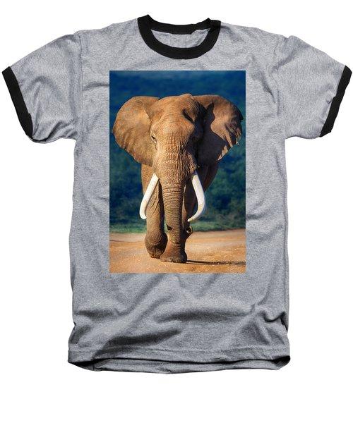 Elephant Approaching Baseball T-Shirt