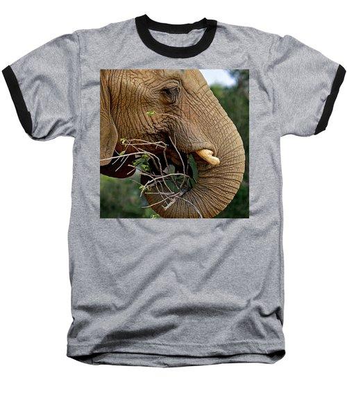 Elephant Curl Baseball T-Shirt
