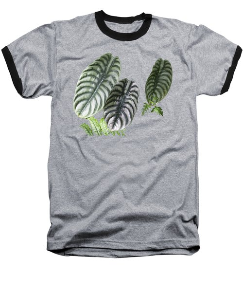 Elephant Ears Transparency Baseball T-Shirt