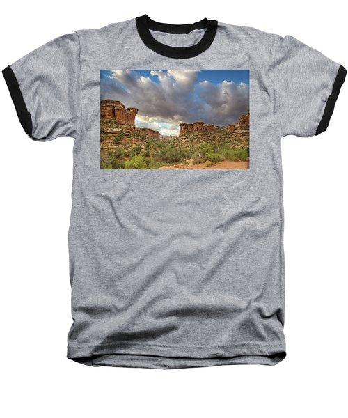 Elephant Sunrise Baseball T-Shirt