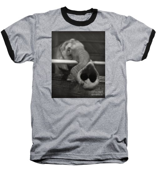 Baseball T-Shirt featuring the photograph Elephant Trunk by Martin Konopacki