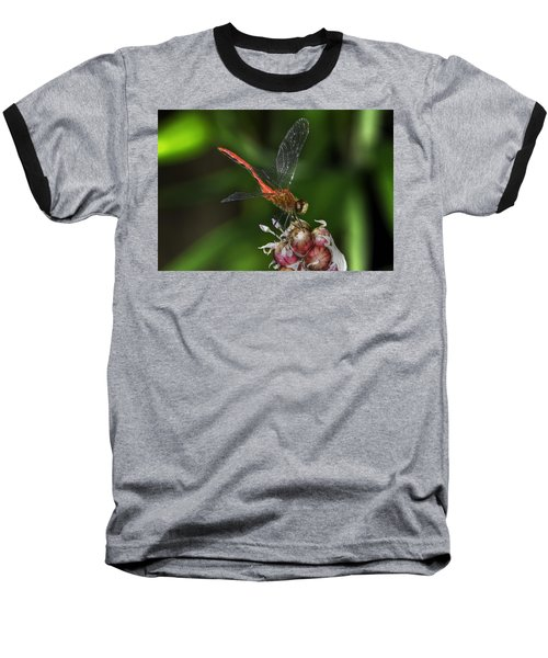 Eliza Skimmer Baseball T-Shirt