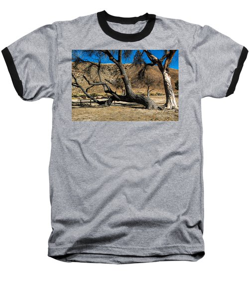Elizabeth Lake Tree Baseball T-Shirt