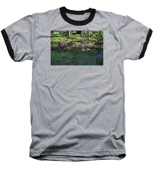Baby Elk Rmnp Co Baseball T-Shirt