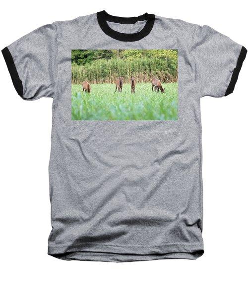 Elk Calves Baseball T-Shirt