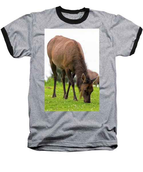 Elk Grazing On Green Pasture Closeup Baseball T-Shirt