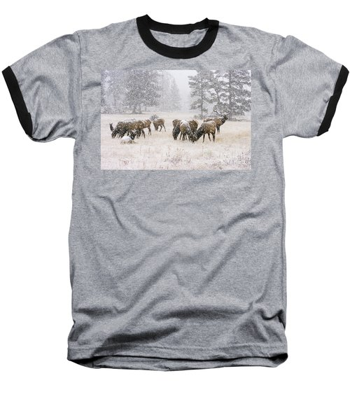 Elk In A Snow Storm - 1135 Baseball T-Shirt