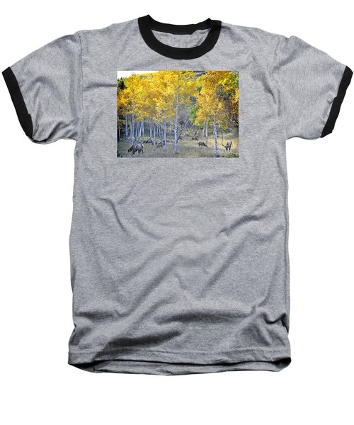 Baseball T-Shirt featuring the photograph Elk In Rmnp Colorado by Nava Thompson