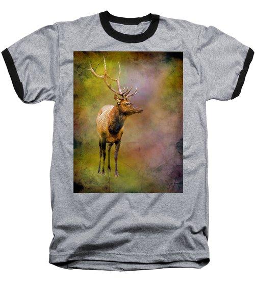 Elk In The Rockies Baseball T-Shirt