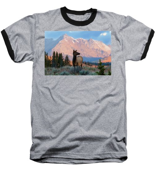 Elk Majesty Baseball T-Shirt