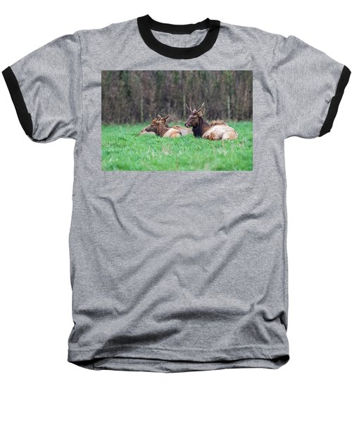 Baseball T-Shirt featuring the photograph Elk Relaxing by Paul Freidlund