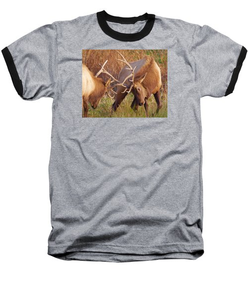 Baseball T-Shirt featuring the photograph Elk Tussle by Todd Kreuter