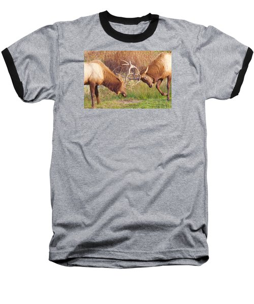 Baseball T-Shirt featuring the photograph Elk Tussle Too by Todd Kreuter