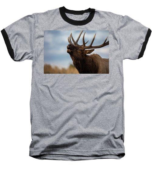 Elk's Screem Baseball T-Shirt by Edgars Erglis