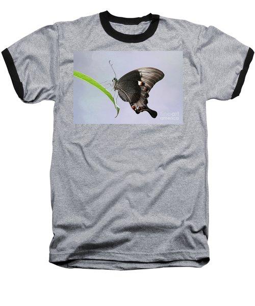 Emerald Peacock Swallowtail Butterfly V2 Baseball T-Shirt