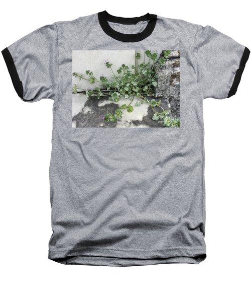 Emergence Baseball T-Shirt by Kim Nelson