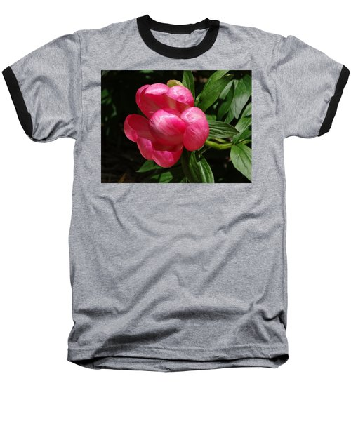 Emerging Peony Bloom Baseball T-Shirt by Rebecca Overton