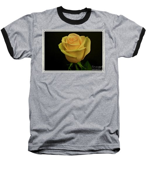 Baseball T-Shirt featuring the photograph Empress Rose by Marsha Heiken