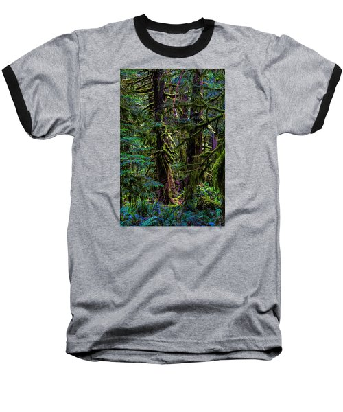 Enchanted Baseball T-Shirt by Alana Thrower