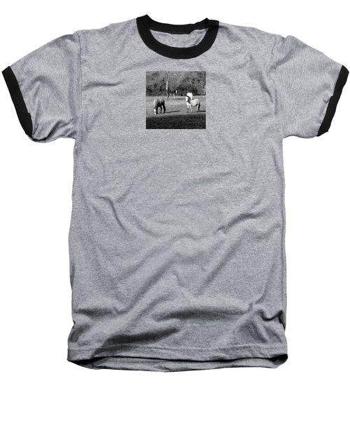 English Horses Baseball T-Shirt