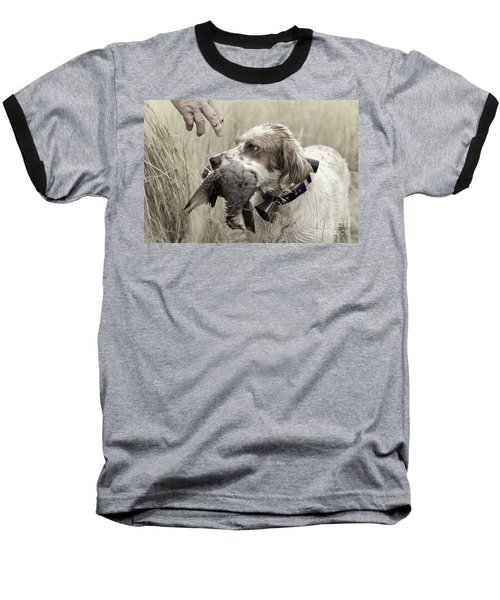 English Setter And Hungarian Partridge - D003092a Baseball T-Shirt by Daniel Dempster