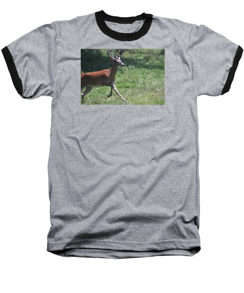 Baseball T-Shirt featuring the photograph Enjoying A Bright Day by Vadim Levin