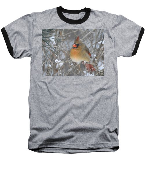 Enjoying The Snow Baseball T-Shirt
