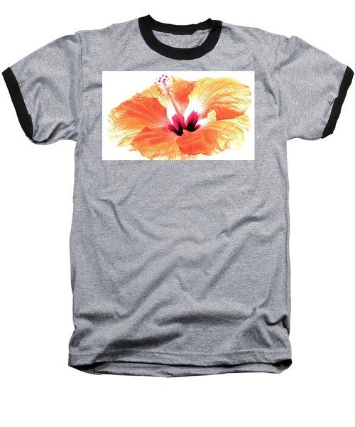 Enlightened Baseball T-Shirt