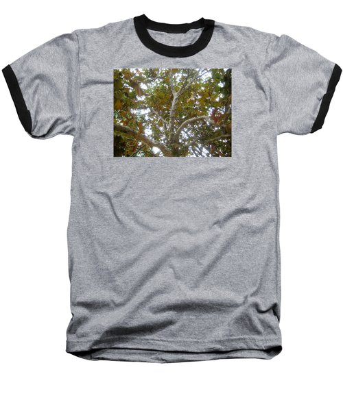 Enlightened Autumn Baseball T-Shirt