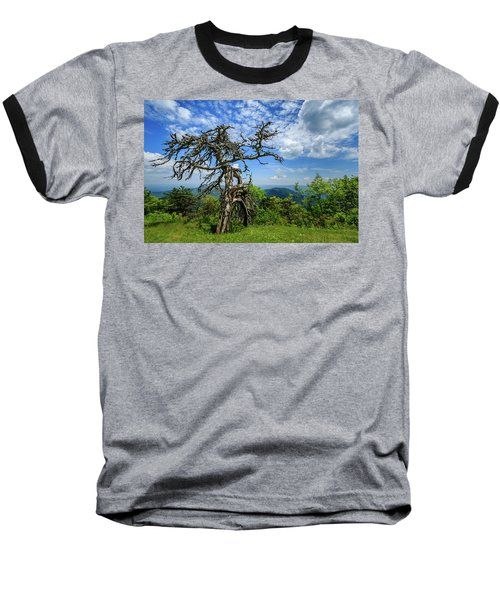 Ent At The Top Of The Hill - Color Baseball T-Shirt by Joni Eskridge