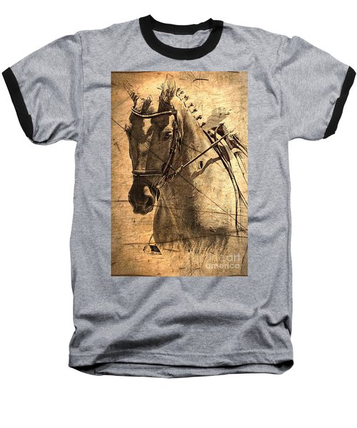 Equestrian Baseball T-Shirt by Clare Bevan