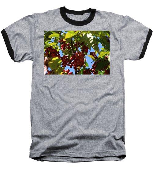 Ethiopian Coffee Beans Baseball T-Shirt