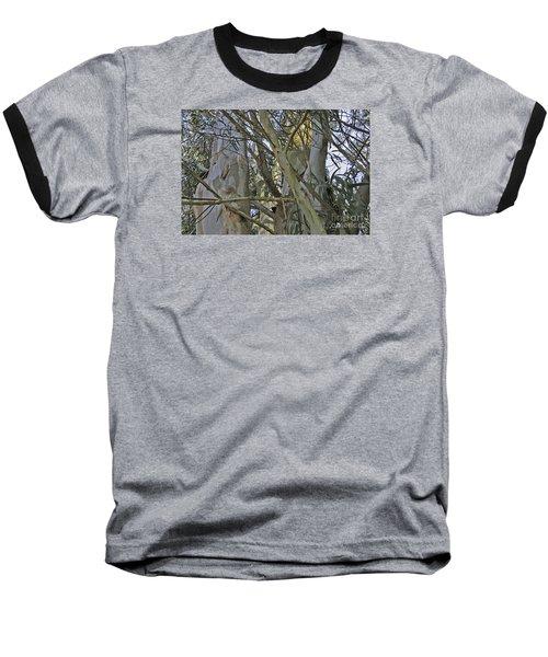 Eucalyptus Study Baseball T-Shirt
