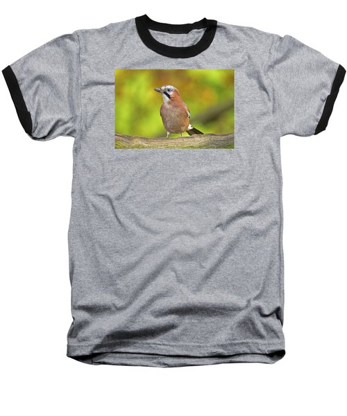 Baseball T-Shirt featuring the photograph Eurasian Jay by Paul Scoullar