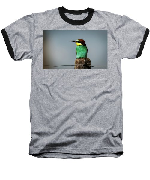 Baseball T-Shirt featuring the photograph European Bee Eater by Wolfgang Vogt