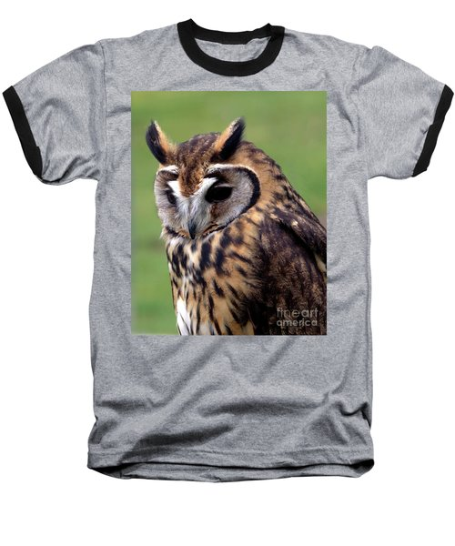 Eurasian Striped  Owl Baseball T-Shirt by Stephen Melia