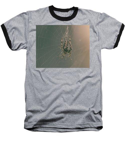 European Garden Spider B Baseball T-Shirt