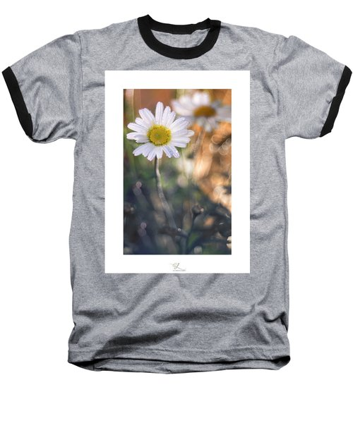 Evening Daisy Baseball T-Shirt
